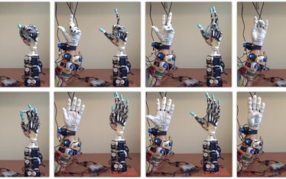 Cercetătorii intenţionează să crească tendoane umane pe o mână robotică avansată