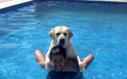 """Statutul de rezervă nu-l oprește pe Isco să glumească: """"Câinele meu Messi ține cu Real Madrid de mic"""""""