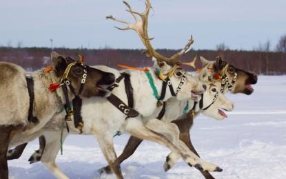 Destinații superbe pentru o vacanță de iarnă memorabilă