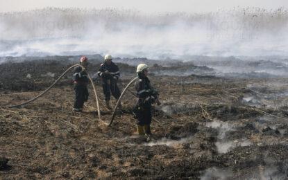 """Alertă în jurul Bucureștiului. """"Cel puțin un incendiu de vegetație pe zi, în ultima săptămână"""". Ce idee au autoritățile"""
